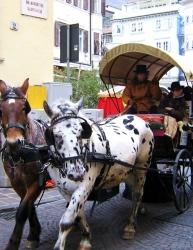 mercatino di natale,zelten,musiche,atmosfere,vin brulè