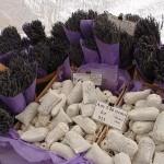 lavanda -LavenderInMarket