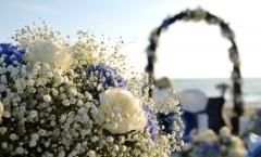 Eleonora e Walter: Cronaca di un matrimonio di mezza estate