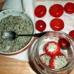 Peperoncini rossi piccanti (2)