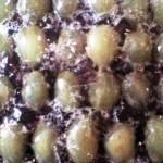 uva (2)