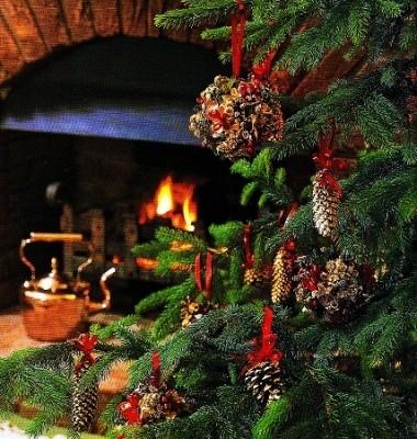 Decorazioni per l albero di natale pigne globi e ghirlande ieri oggi in cucina - Decorazioni natale pigne ...