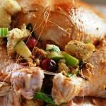 1024px-Stuffed_turkey