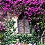 Aragosta alla Bretone Pranzo romantico al castello