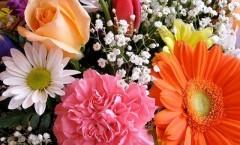 Galateo: Ditelo con i fiori Galateo: Quanti e quali fiori regalare?