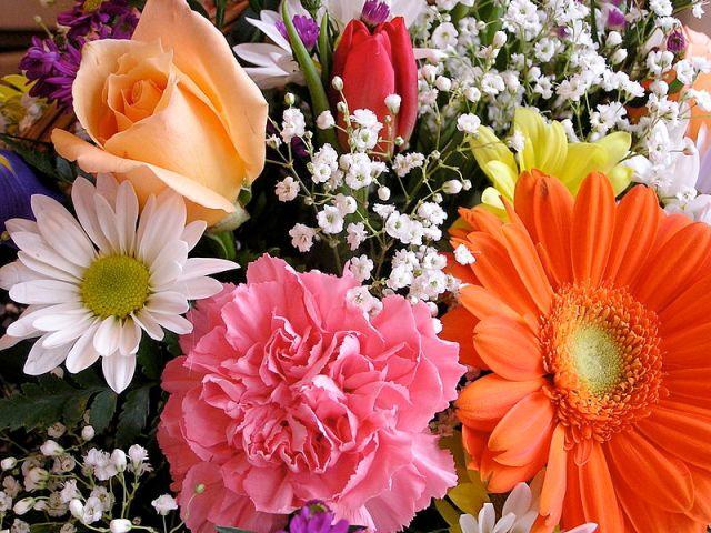 Eccezionale Galateo: Quanti e quali fiori regalare? | ieri & oggi in cucina CQ64