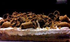 Decorazioni di cioccolato: foglie, riccioli, rotolini....