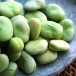 fave Broad-beans-after-cooking